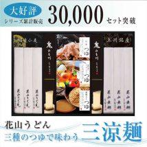 三種のつゆで味わう三涼麺(SR-30)