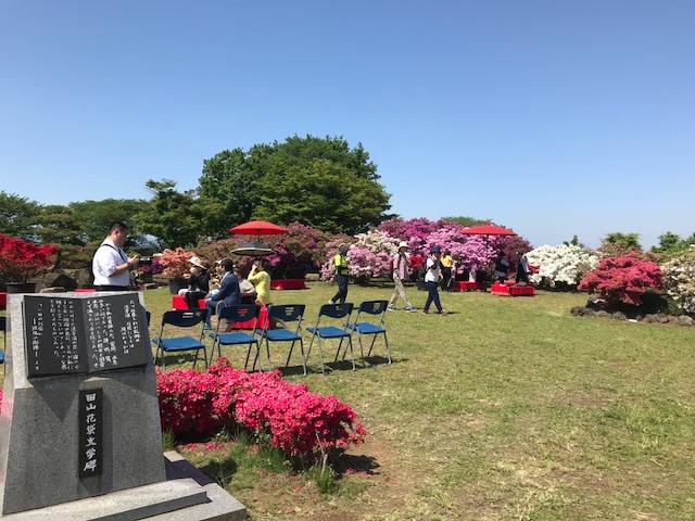 館林 つつじが岡公園(花山公園) ツツジ広場の茶会イベント