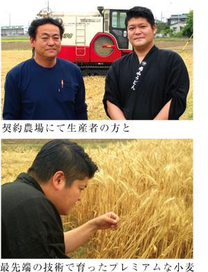 元気ファーム20 生産者様 小麦畑