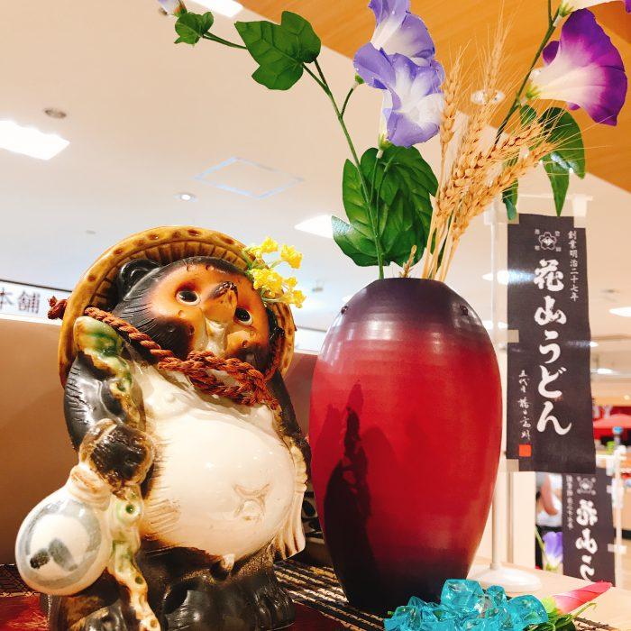 花山うどんアゼリアモール店 夏ディスプレイ たぬき 朝顔