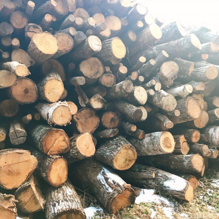 舞茸菌床の材木