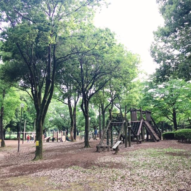 アスレチック公園